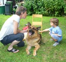 Hund im Kindergarten